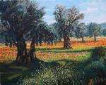 <h1>Olive grove in Cyprus</h1>